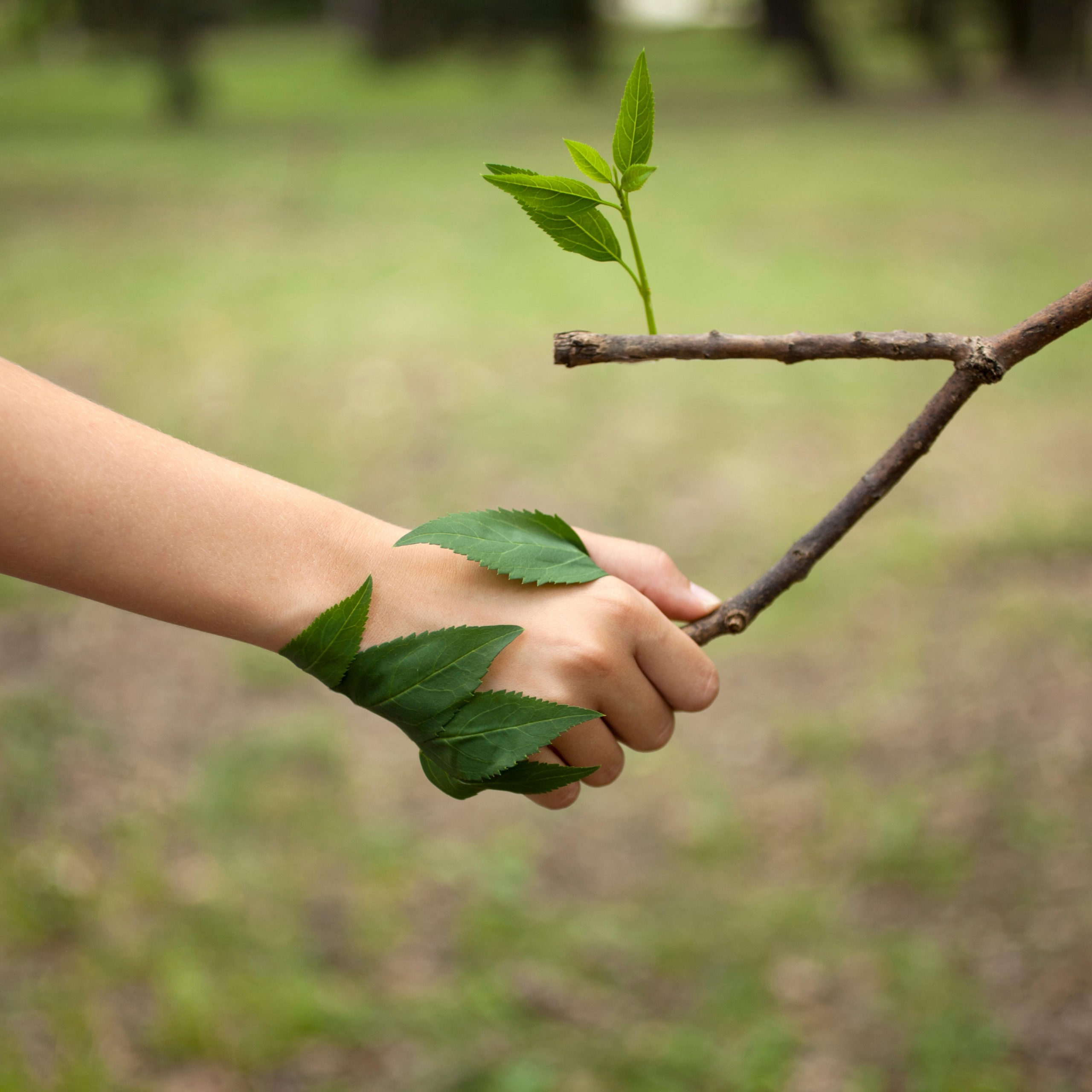 Projets environnementaux-visuel 1